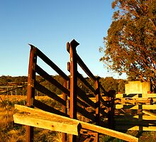 Stock Ramp - Beechworth by Darren Stones