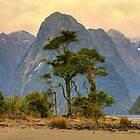 Milford Sound 3 by Hans Kawitzki
