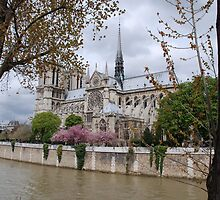 Notre Dame: Icon of Paris by mswendsen