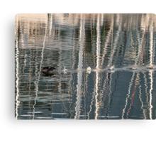 Cormorant takeoff Canvas Print