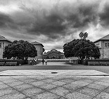 One Day in Stanford / Study 2 by joeschmied