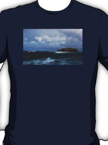 Sheep Island T-Shirt