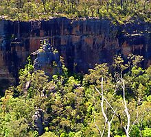 Fitroy Falls from Jerset Lookout, Fitroy Falls, NSW, Australia by Peter Clements