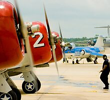 T-6 Texan Line up by Paul Lenharr II
