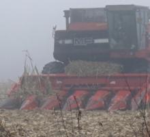 Fog Closes in on the Farm Sticker