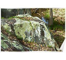 Boulder with lichen Poster