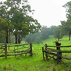 Rustic Gateway and Cattleyards Panoramic, Southern Highlands, NSW, Australia by Peter Clements