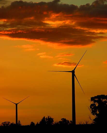 Windfarm at Sunset by Peter Clements