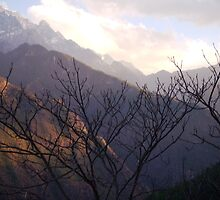 Tiger Leaping Gorge by Simone  Cook