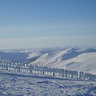 Snowy view of Glenshee by gayler
