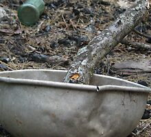 Epiphany ashes with metal bowl and wooden branch by Laurkat