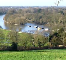 Overlooking The Thames River, Richmond, UK by DJWToday2