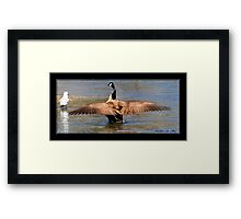 OUT-STRETCHED WINGS Framed Print