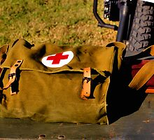MEDICAL BAG by Cheryl Hall