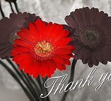 Thank You by James Millward