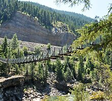 Kootenai Falls Suspension Bridge, Libby Montana by jcimagery