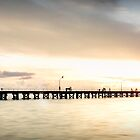 Busselton Jetty by Kirk  Hille