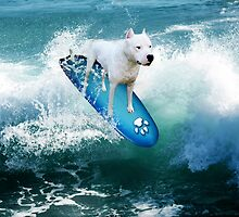YOU SURFERS HAVE NOTING ON ME...PIT BULL SURFS. PILLOW OR TOTE BAG OR.PICTURE AND OR CARD by ✿✿ Bonita ✿✿ ђєℓℓσ