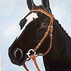 Black Beauty  by coolart