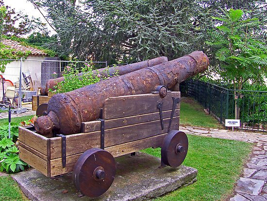 Rusty cannon by Tom Gomez