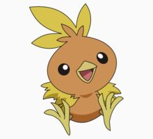 POKEMON TORCHIC by lordhelix
