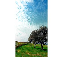 Cornfields, trees and lots of clouds | landscape photography Photographic Print