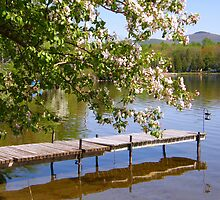 Spring By The Lake by marchello