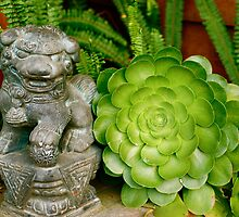 Asian Figure in Succulent Garden by Julie Marks
