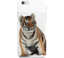 Young Tiger3 iPhone Case/Skin