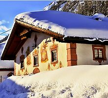 House in Alps under a snowy roof by Elzbieta Fazel