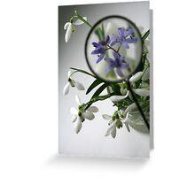 Focused on spring Greeting Card