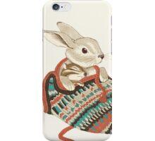 cozy chipmunk  iPhone Case/Skin