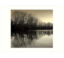 Winter Symmetry Art Print