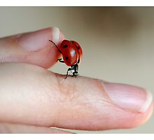 Ladybug on my fingers by Ellen van Deelen