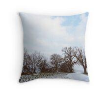 A Walk in Winter Throw Pillow
