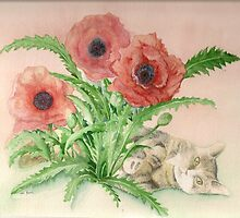 Cat in poppies by Annartist2015
