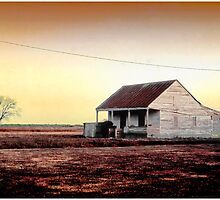 Dirt Farm Just Outside New Orleans by Mark Ross