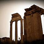 Temples of Vesta & Castor & Pollux, Rome, Italy by buttonpresser