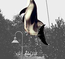 Orca by Lee Kerr