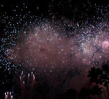 Firework Splendor by Celeste Thinks