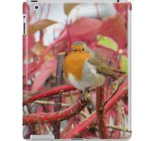 Ireland - Blarney Robin iPad Case/Skin