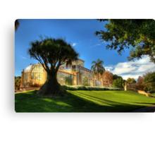 Palm House, Adelaide Botanic Gardens Canvas Print
