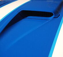 XC Cobra Bonnet Scoop by deanonet