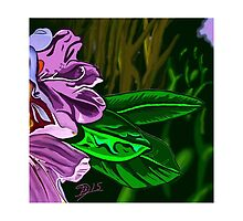 Tangled abstract of a purple flower by BruceFuller