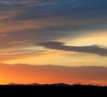 West Texas Sunset by Debbie Irwin