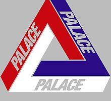 PALACE SB by lukecorallo