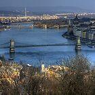 Budapest by hynek