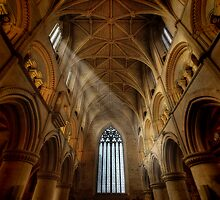 Malmesbury Abbey by greenbunion