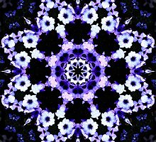 Ultraviolet Floral Kaleidoscope  by TigerLynx