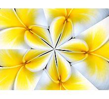 Frangipani Kaleidoscope Photographic Print